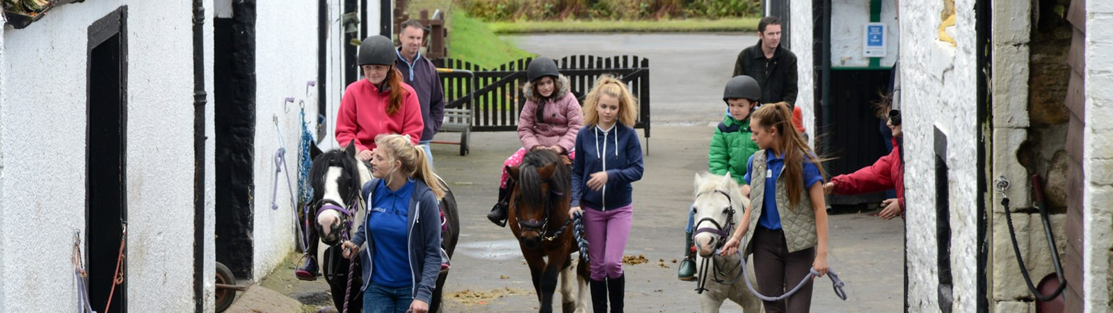 Horseriding in the Falkirk Area, Things to do In Falkirk
